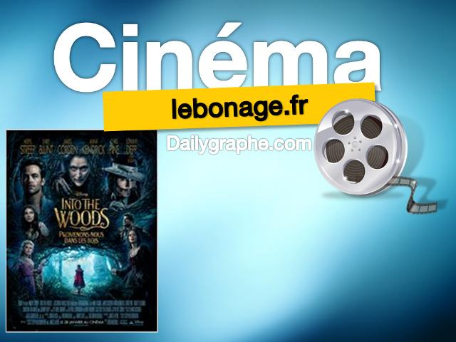 photo Films à l'affiche : Into the Woods, Promenons-nous dans les bois